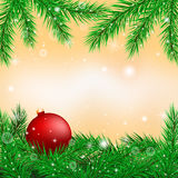 Bright christmas background. Of fir branches. vector graphics Royalty Free Stock Photography