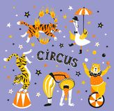 Bright circus poster design with acrobats, trained animals and text - `circus`. Vector illustration. Stock Photography