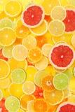 Bright Citrus Stock Image