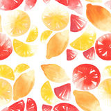 Bright citrus fruits sliced and whole pattern watercolor hand sketch. Bright tasty citrus fruits sliced and whole pattern watercolor hand sketch Stock Photo
