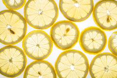 Bright citrus lemon slices on white. Bright citrus lemon slices. Juicy transparent fruit on white Royalty Free Stock Images