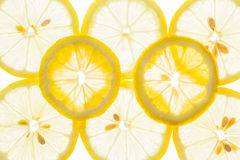Bright citrus lime and lemon slices. Juicy transparent fruits on Stock Photography