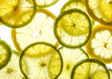 Bright citrus lime and lemon slices on white Stock Images
