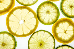 Bright citrus lime and lemon slices on white. Bright citrus lime and lemon slices. Juicy transparent fruit on white Royalty Free Stock Photos