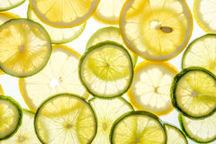Bright citrus lime and lemon slices on white. Bright citrus lime and lemon slices. Juicy transparent fruit on white Royalty Free Stock Photo