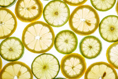 Bright citrus lime and lemon slices on white. Bright citrus lime and lemon slices. Juicy transparent fruit on white Royalty Free Stock Image