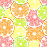 Bright citrus pattern Stock Photography