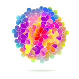 Bright color floral background Royalty Free Stock Photos