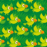 Bright color parrot Royalty Free Stock Image