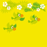 Bright color parrot Royalty Free Stock Images