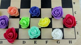 Bright color roses on a chessboard stock video footage