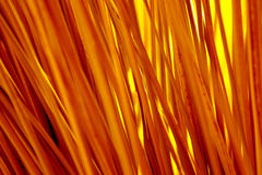 Bright color yellow straws Stock Images