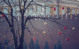 Bright colored Christmas decorations on a defoliated tree in Mos. Cow, Russia Stock Photo