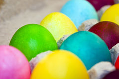 Bright Colored Eggs Stock Images