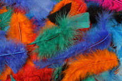 Bright colored feathers background Stock Images