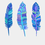 Bright colored feathers. Tribal Ethnic, vectors Royalty Free Stock Photography