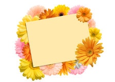 bright colored gerbera flowers and a sheet of paper Stock Photography