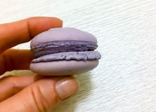Bright colored macaroons  Royalty Free Stock Photography