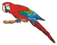 Bright colored parrot. Sitting on a branch, vector illustration Stock Photography