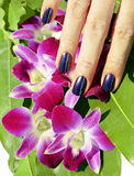 Bright colored photo of fingernails with manicure Royalty Free Stock Image