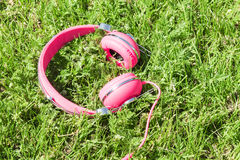 Bright colored pink headphones on green sward Stock Images