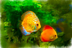 Bright colored tropical fish on algae background. Watercolor, stylized Royalty Free Stock Photos