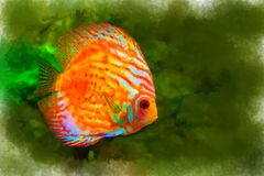 Bright colored tropical fish on algae background. Watercolor, stylized Royalty Free Stock Photo