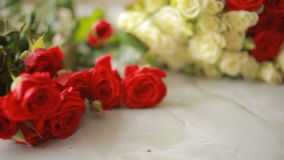 Bright colorful bouquet of red and white roses, close-up stock footage