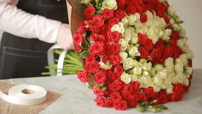 Bright colorful bouquet of red and white roses, florist woman gathers a bouquet stock video