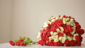 Bright colorful bouquet of red and white roses, florist woman gathers a bouquet stock video footage