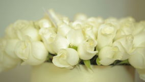 Bright colorful bouquet of white roses, close-up stock video footage
