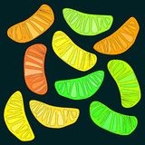 Bright colorful delicious tasty yummy ripe juicy lovely orange summer autumn dessert orange and lemon slices pattern on black back. Ground vector illustration Royalty Free Stock Photo