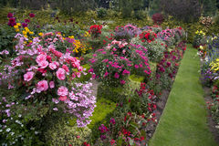 Bright & Colorful English Garden Border Stock Photo