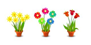 Bright, Colorful Flowers Clip Art Stock Images