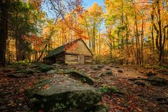 Bright Colorful Forest Abandoned Location Barn Wooden Rocky Path Nowhere Empty Nobody Fall Autumn Colors royalty free stock image