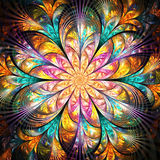 Bright colorful fractal flower Stock Photos