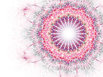 Bright and colorful fractal flower Stock Photo