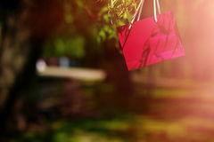 Bright colorful red pink bag hanging in the tree Royalty Free Stock Photos