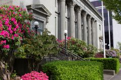 Flowers and blue sky surround a government building in Washington State. royalty free stock image