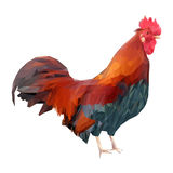 Bright colorful rooster on a white background. Red fiery cock is a 2017 year symbol. Stock Photo
