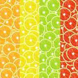 Bright, colorful, set of backgrounds citrus Royalty Free Stock Photos