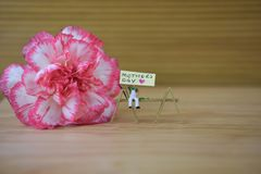 Fresh pink flower of a carnation with mothers day words and a love heart shape. A bright colorful springtime carnation fresh flower with a natural rustic wood Stock Photography