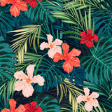 Bright colorful tropical seamless background with Stock Images
