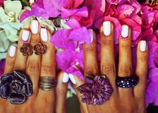 Bright colorfull shot of african tanned hands with manicure amon. G pink flowers wearing jewellery among flowers Royalty Free Stock Photos