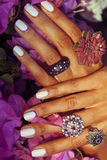 Bright colorfull shot of african tanned hands with manicure among pink flowers wearing jewellery among flowers Royalty Free Stock Images
