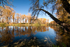The bright colors of autumn. Autumn Landscape in the park by the lake stock photo
