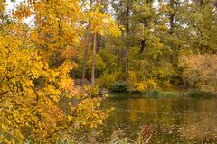 Bright colors of autumn in the park by the lake Stock Photography