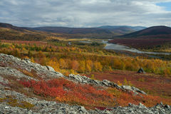 Bright colors of autumn in the valley. Sob River. Polar Urals. Russia royalty free stock photos