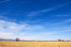 Bright Colors on the Colorado Prairie Stock Photography