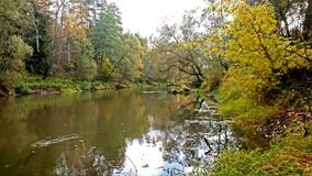 The bright colors of early autumn. Landscape in early autumn, which you can enjoy forever. Bright foliage of the trees reflected in the water of a small river Stock Photography